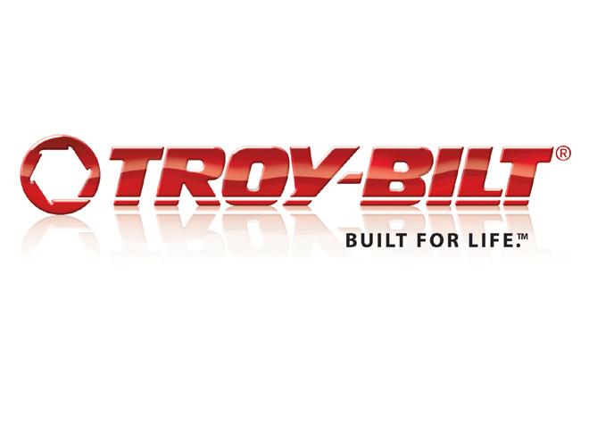 DIY Troy Bilt Cullins Service