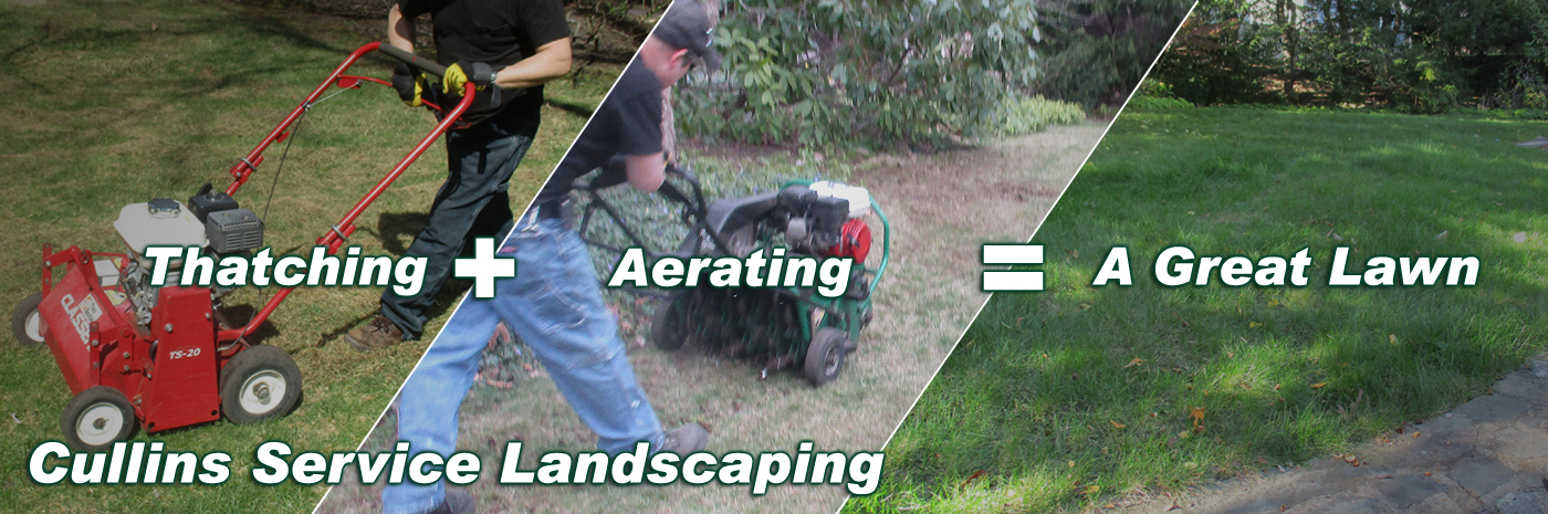 Cullins Service Thatching + Aerating = A Great Lawn