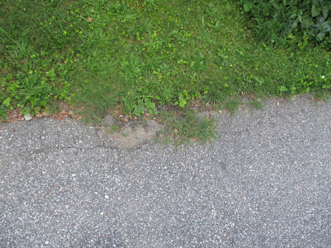 Side of driveway that needs to be cleaned up before sealing