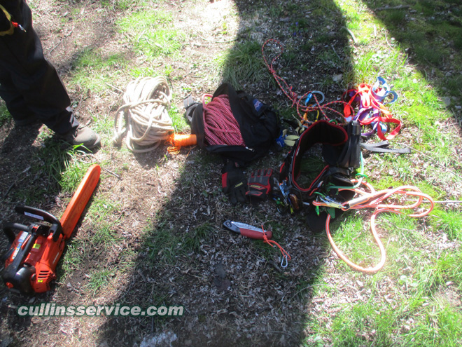 Cullins service equipment Echo CS 330T, pole saw w/ extension and our new harness w/ climbing gear