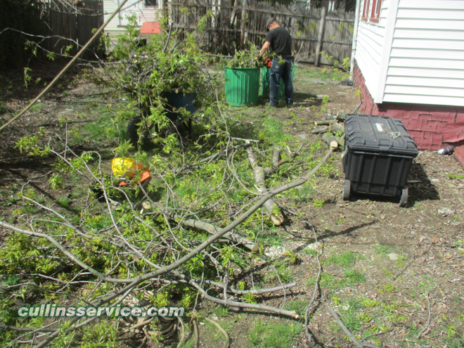 Cutting lowered branches from tree trim