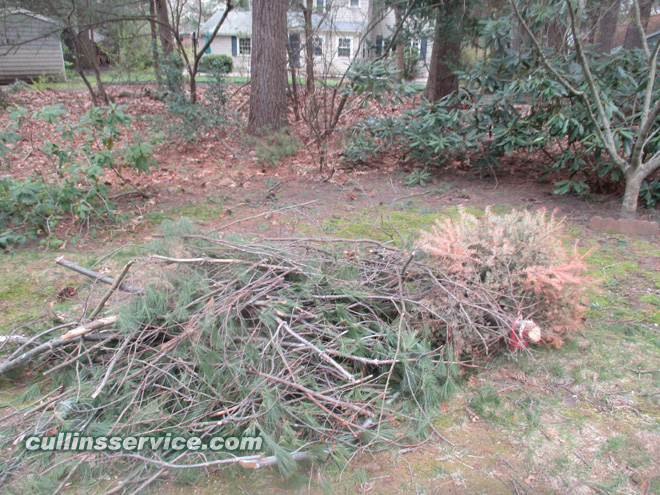 Leaves and piles of debris to clean up