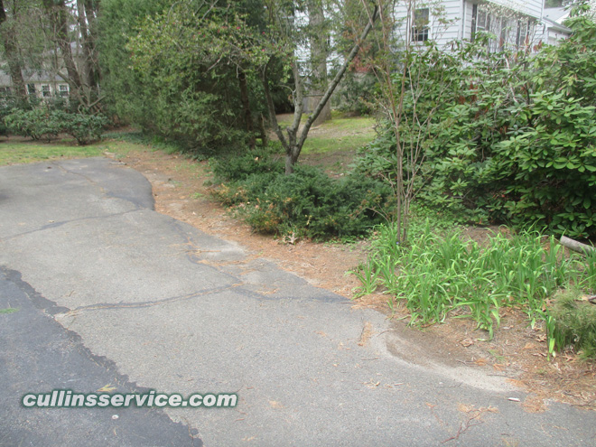 Driveway view before spring clean up and mulch