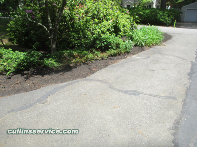 Cullins Service Mulched along the driveway