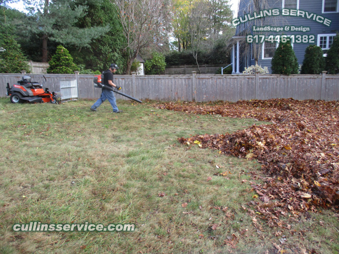 Breaking out the Hussar 150BT Backpack Blower