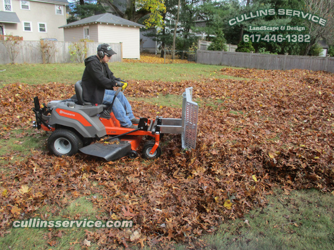 Leaf Removal Service Fall Cleanup Newton, Ma Cullins Service