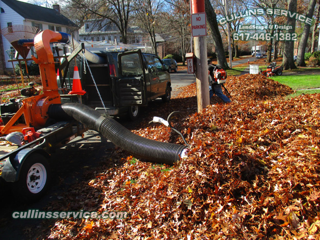 Cullins Service leaf removal has a scag giant vac to make the leaf removal process quick