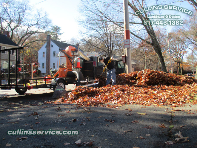 Another way Cullins service has leaf removal more efficient