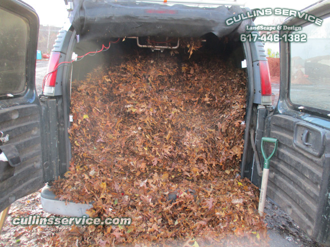 Now Cullins service has to remove leaves from our van turned leaf catcher