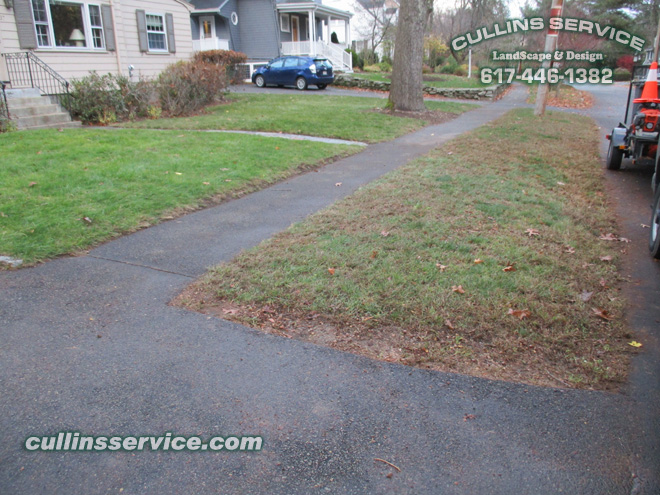 Leaf Removal Service Fall Cleanup Newton, Ma is complete