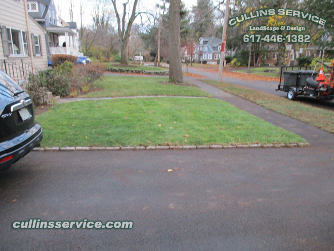 This Newton yard is now leaf free thanks to our Leaf Removal Service