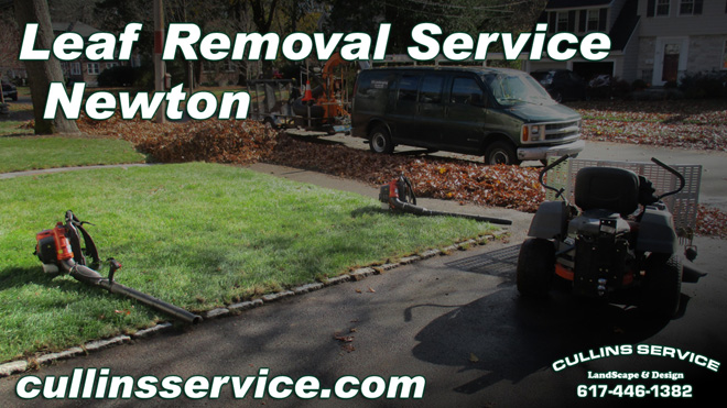 Lawn Installation seeding lawn care in Wellesley, Ma Cullins Service