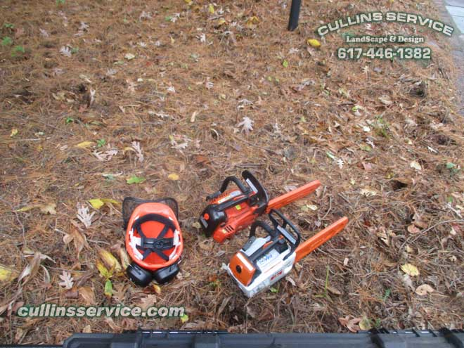 Cullins Service Echo CS 330T and Stihl MS 193T tree saws w/ echo tree safety helmet.