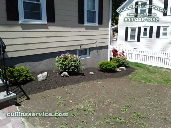 The shrubs are in the ground the edge has been cut and the mulch is put down.