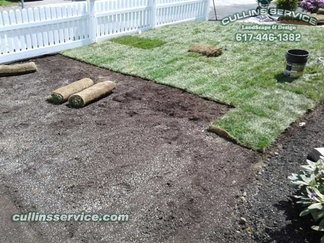 Meticulously setting the sod in place.
