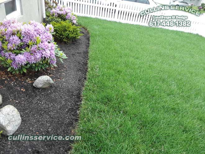 A nice bed edge showing off the sodding skills.
