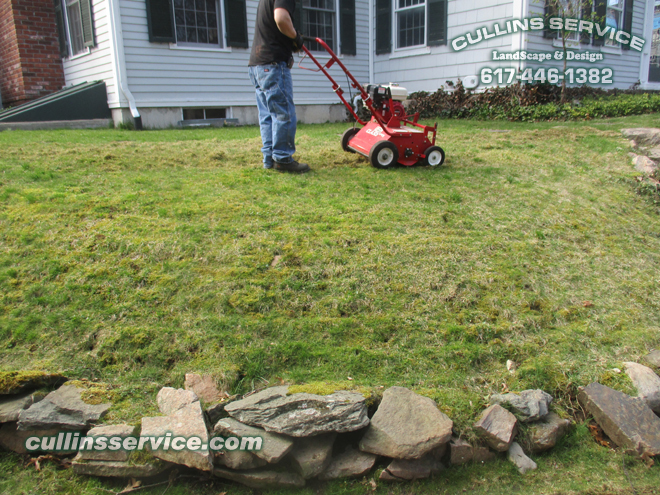 Cullins Service mowed the grass low enough to thatch