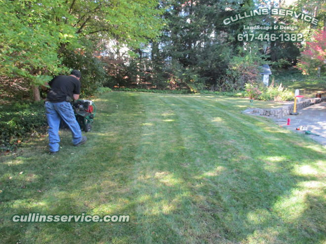 Fall aerating is great for the seeds and grass to start and look great in the spring