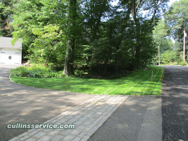 These results makes lawn installation a rewarding experience