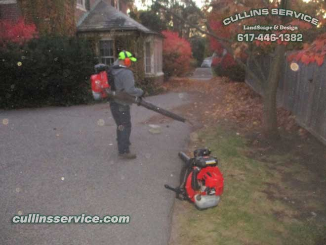 Vaccing leaves at night or as we call it night scagging.