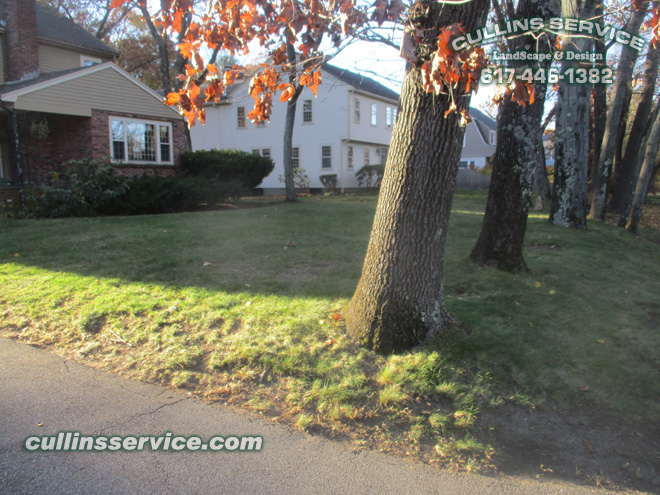 Cullins Service has finished the leaf removal service on this Wellesley home